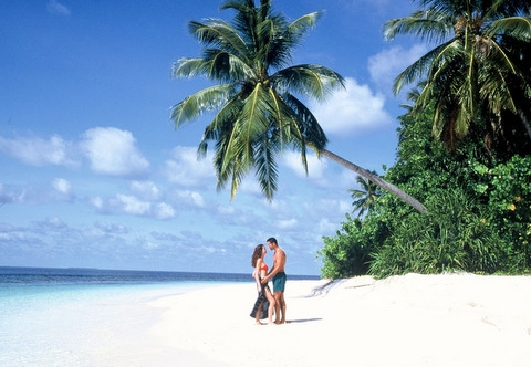 archwium maldives.com