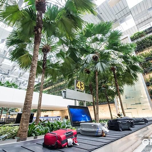 archowum Singapore Changi