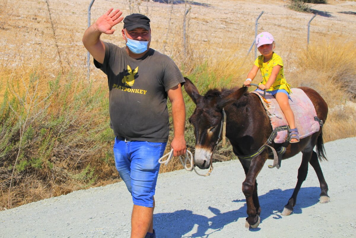 Ośla Farma - atrakcja dla dzieci na Cyprze