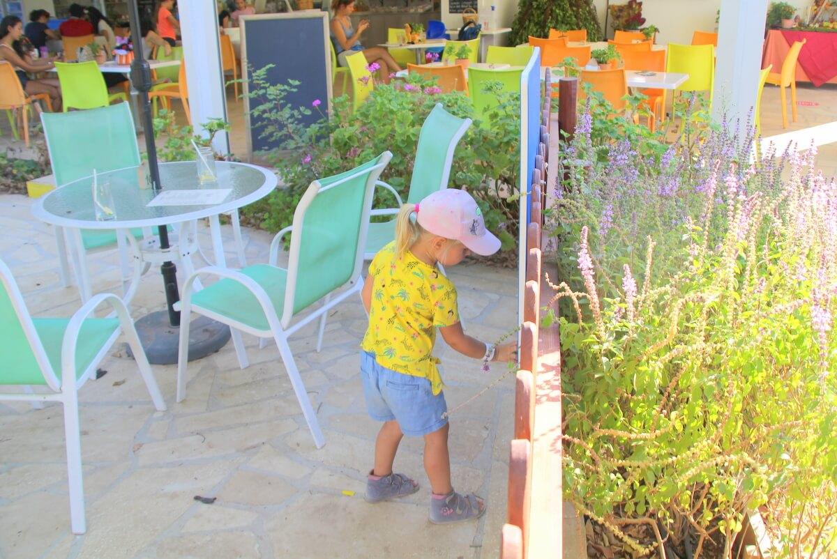 Kawiarenka przy ogrodzie