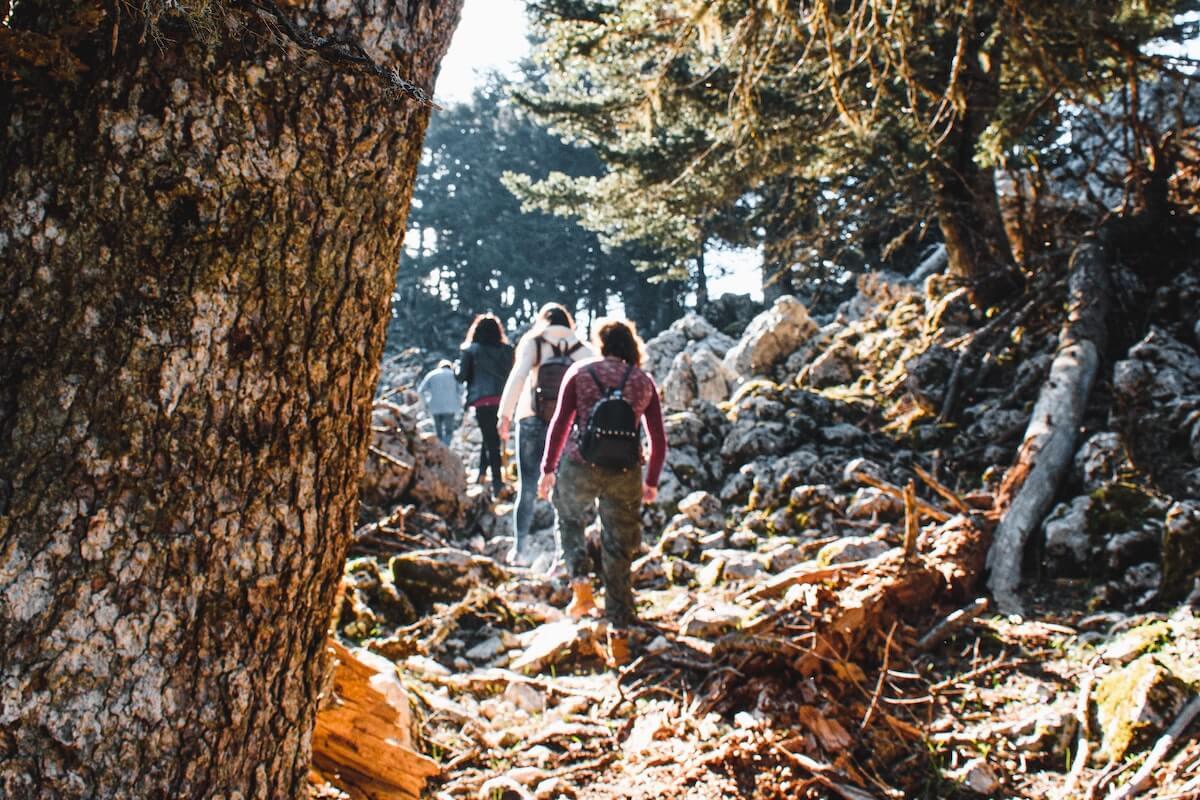 Szlak na górze Ainos
